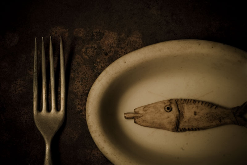 Fish on a Dish (Rhyming Series)