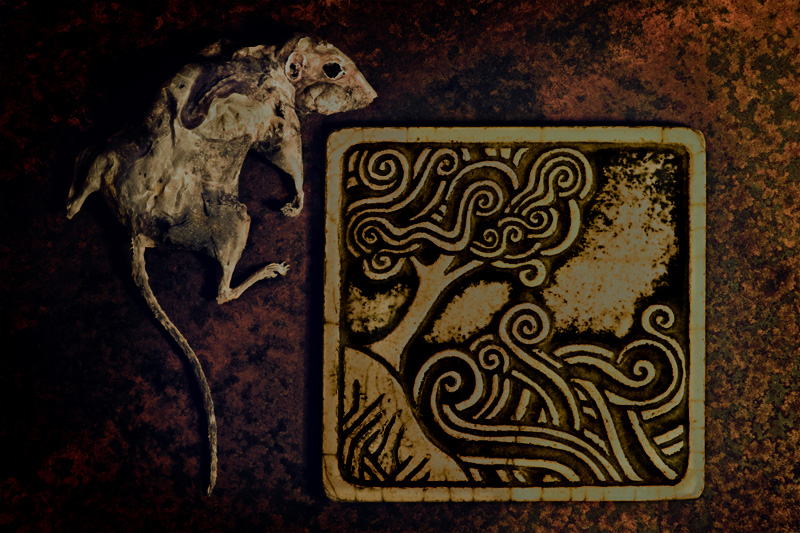 The Tile & the Rat